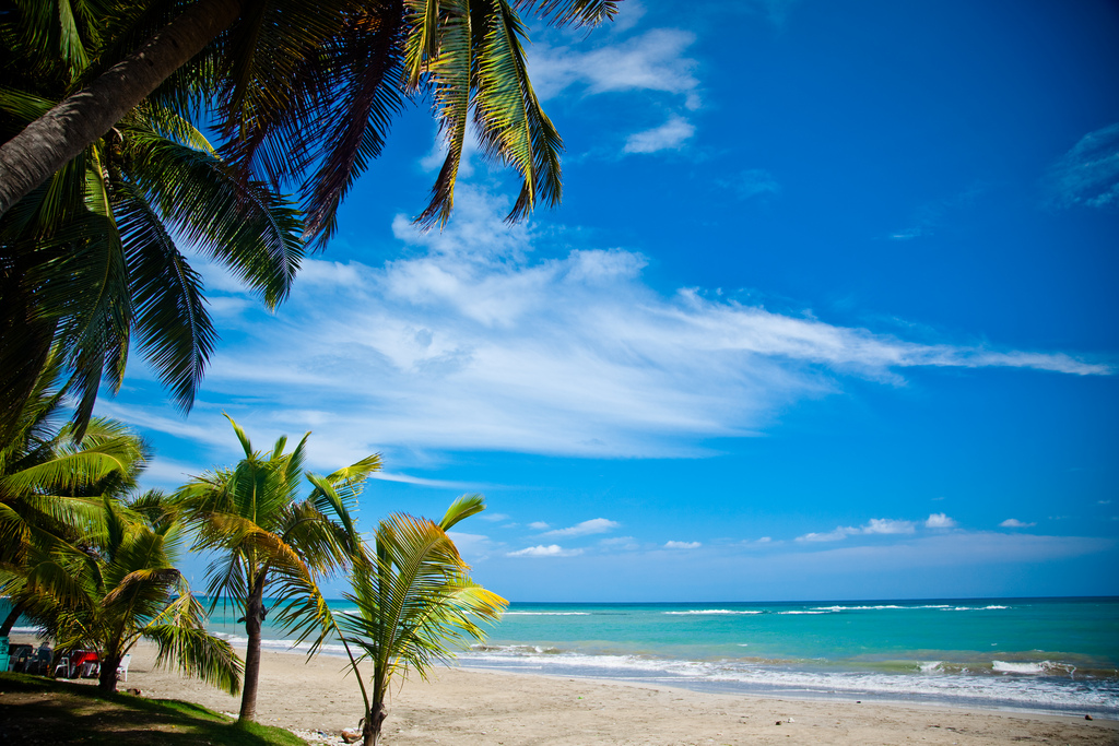 Tropical Caribbean Beach