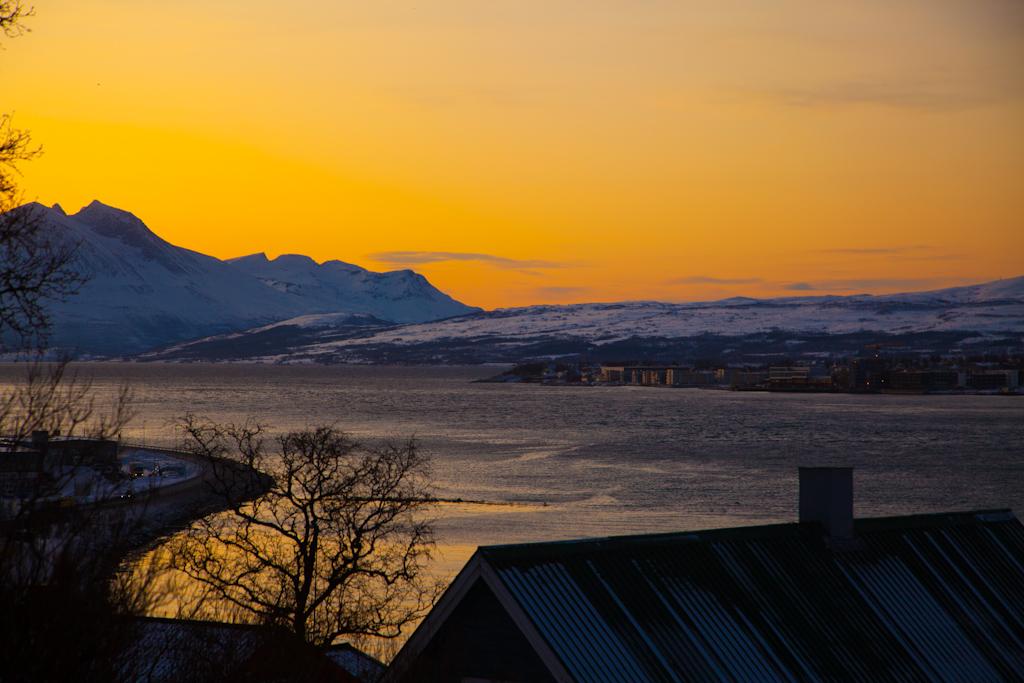 arctic sun norway