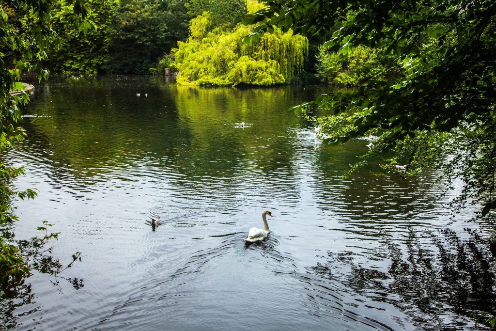 St. Stephen's Green Dublin